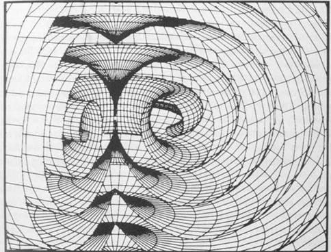 spiralling toroidal form